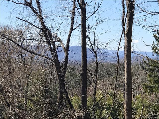Lots 52 & 54 Loomis Avenue, Asheville, NC 28803 (#3487883) :: Team Honeycutt