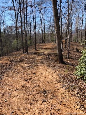 0 Coltan Lane #6, Mill Spring, NC 28756 (#3488114) :: Rinehart Realty