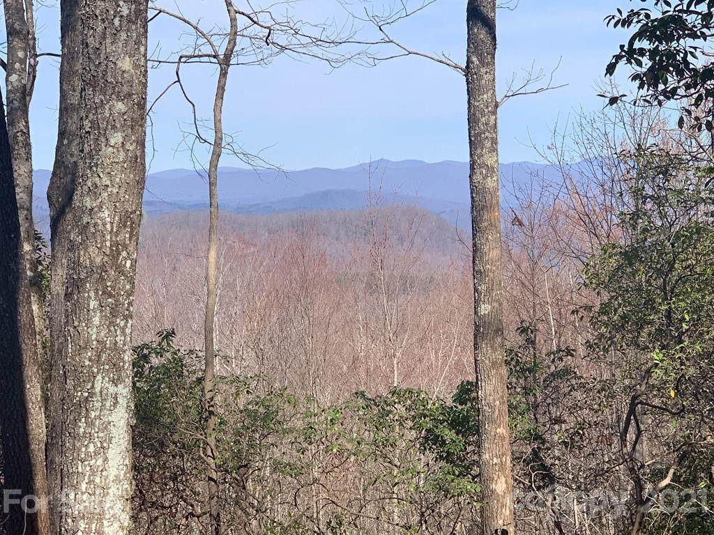 Lot 128 Whitetail Trail - Photo 1