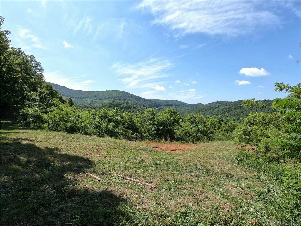 41 +/- Acres Homers Lane - Photo 1