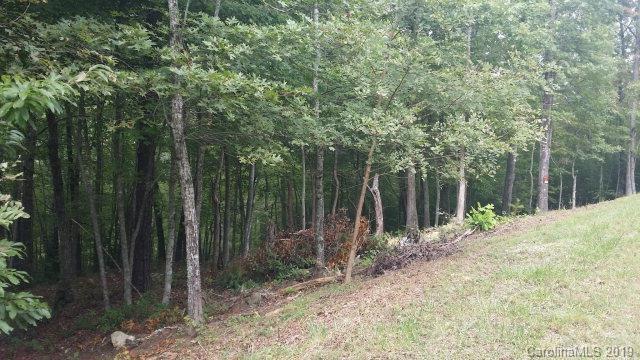 Lot#21 Little Fox Run, Marion, NC 28752 (#3488799) :: Keller Williams Professionals