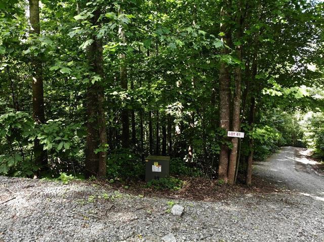Lot#61 Brindlewood Drive, Marion, NC 28752 (#3488832) :: Rinehart Realty