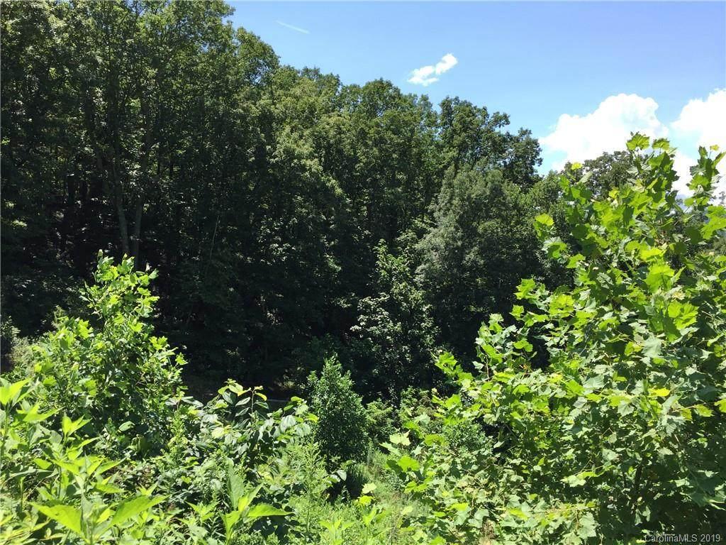 V/L Peppers Creek Road - Photo 1