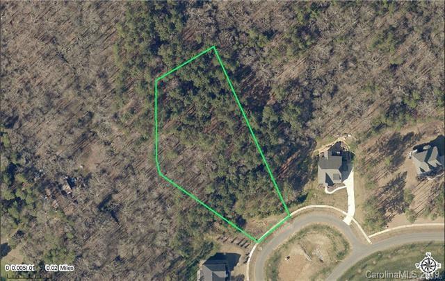 15218 Pavilion Valley Circle, Huntersville, NC 28078 (#3489155) :: MECA Realty, LLC