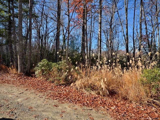 lot 19-21 Laurel Cove Retreat, Etowah, NC 28729 (#3489243) :: Exit Mountain Realty