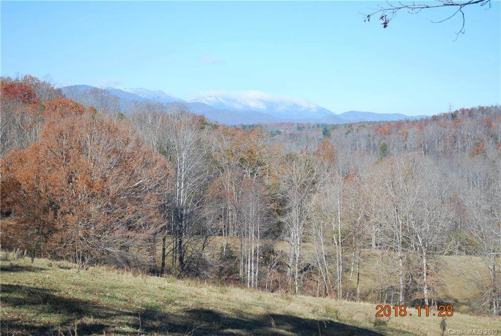 102 Mount Pleasant Church Road - Photo 1