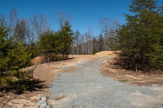334 Summer Orchard Drive #27, Hendersonville, NC 28792 (#3489576) :: Roby Realty