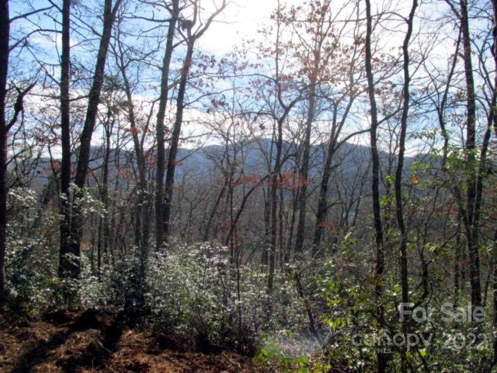 Lot #33 Tamarack Trail #33, Cullowhee, NC 28723 (#3490361) :: Carlyle Properties