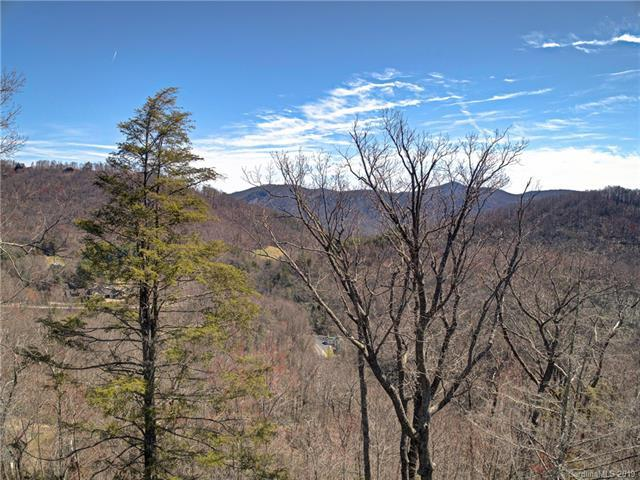 0000 Old Place Bluff Drive, Bat Cave, NC 28791 (#3490524) :: Washburn Real Estate