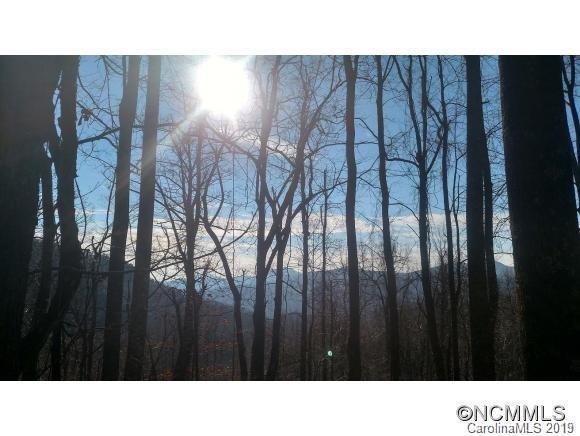 902 Nicey Gap Road - Photo 1