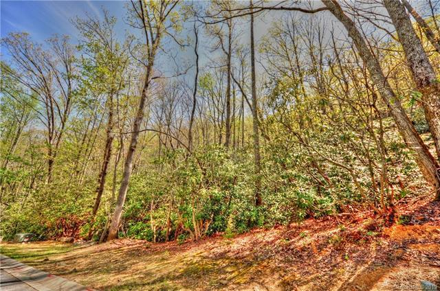 50 Settings Boulevard #141, Black Mountain, NC 28711 (#3490889) :: Keller Williams Professionals