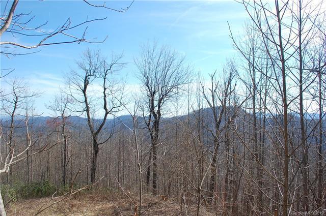 000 Peaceful Night Trail #9, Zirconia, NC 28790 (#3491034) :: Keller Williams Professionals
