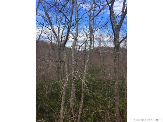 Lot 81 Arcadia Falls Way, Black Mountain, NC 28711 (#3491080) :: High Performance Real Estate Advisors