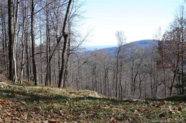 21 High Cliffs Trail #32, Black Mountain, NC 28711 (#3491226) :: Cloninger Properties