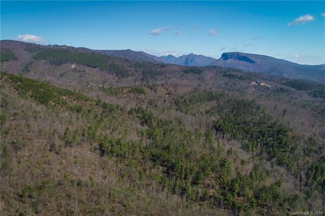 0 Pisgah Preserve, Nebo, NC 28761 (#3491366) :: Miller Realty Group