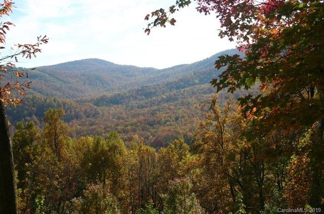 20 High Cliffs Trail #33, Black Mountain, NC 28711 (#3491444) :: Cloninger Properties