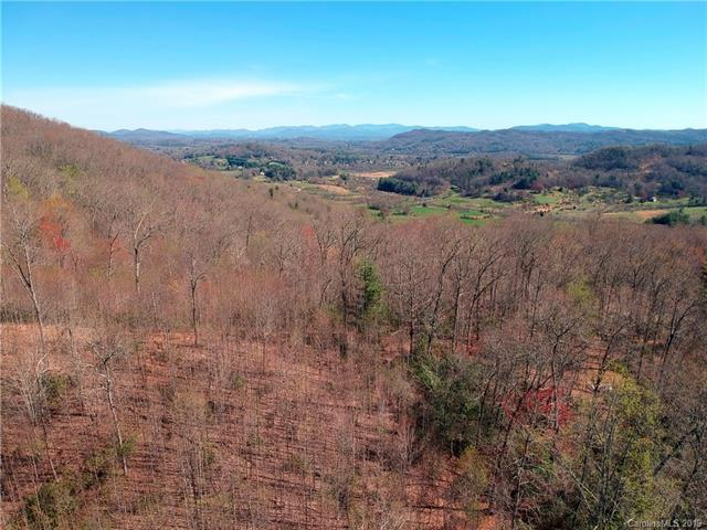 99999 Pleasant Grove Church Road, Hendersonville, NC 28739 (#3491482) :: Exit Mountain Realty
