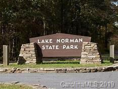509 State Park Road, Troutman, NC 28166 (MLS #3491492) :: RE/MAX Impact Realty