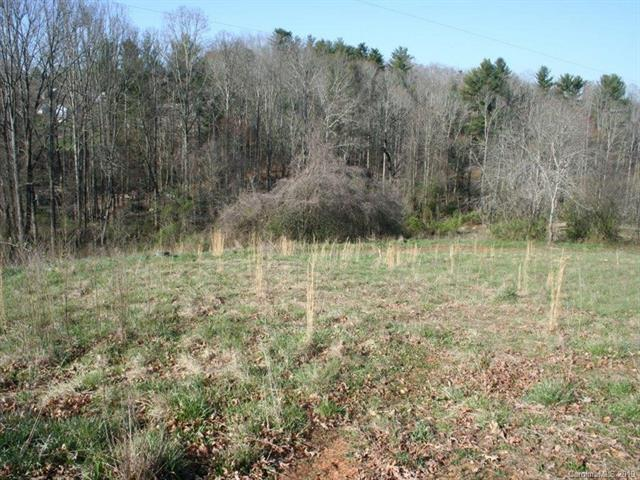 1025 Reed Street, Woodfin, NC 28804 (#3491512) :: LePage Johnson Realty Group, LLC
