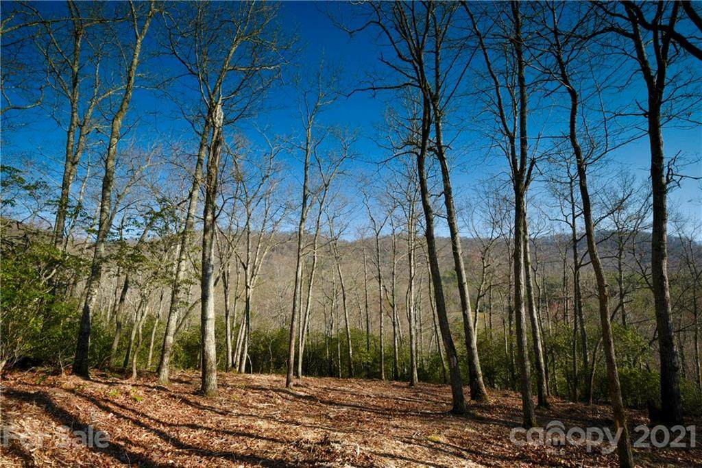 423 Walnut Valley Parkway #106, Arden, NC 28704 (#3491685) :: IDEAL Realty