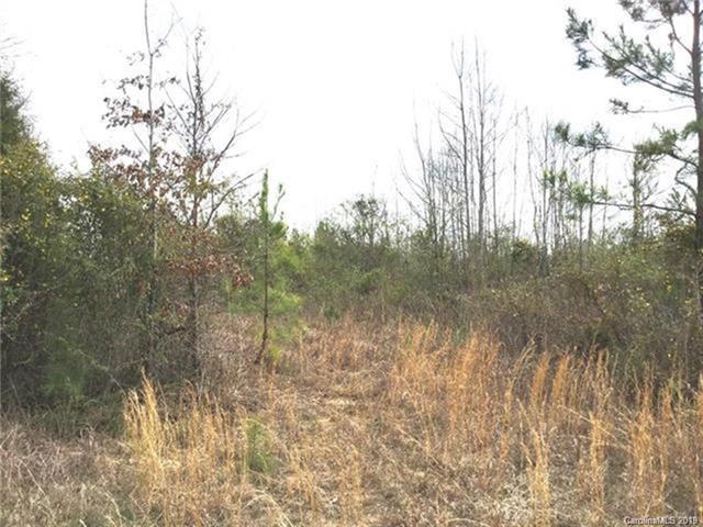 00 Hwy 5 Highway 10 Acres, Catawba, SC 29704 (#3491741) :: LePage Johnson Realty Group, LLC