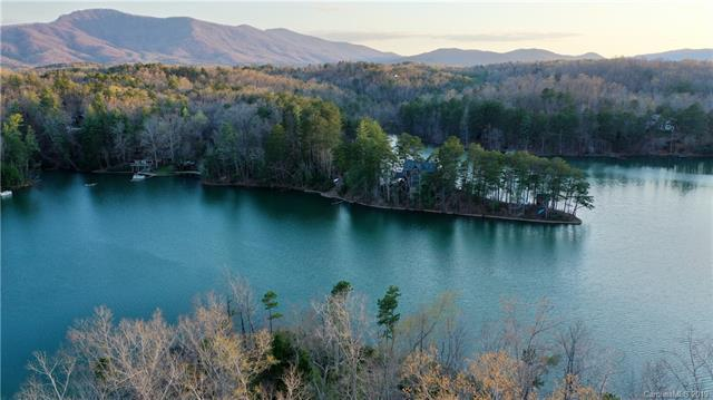 41 Peninsula Drive, Mill Spring, NC 28756 (#3491928) :: DK Professionals Realty Lake Lure Inc.