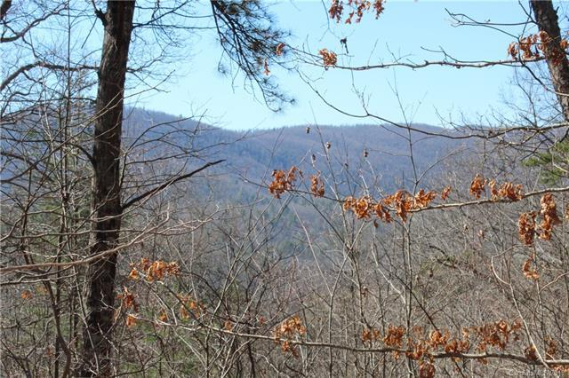 242 Black Bear Ridge Trail #28, Zirconia, NC 28790 (#3492109) :: Team Honeycutt