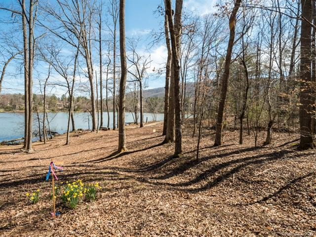 112 Blue Quill Court #5006, Biltmore Lake, NC 28715 (#3492450) :: Rinehart Realty