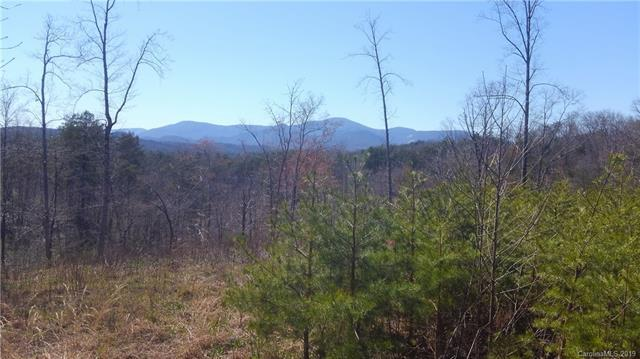 176 Deer Jump Trail - Photo 1