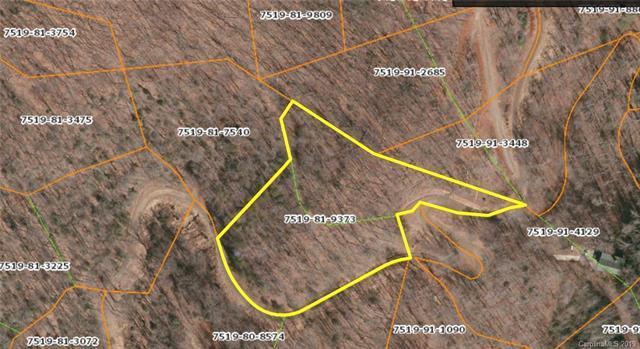 Lt 5,6 Hemlock Falls Drive 5,6, Sylva, NC 28779 (#3493659) :: SearchCharlotte.com