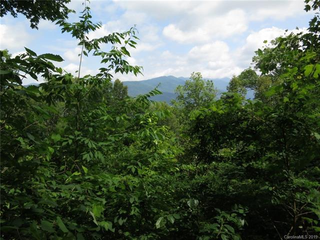 000 Wildflower Cove Road 20, 21, Swannanoa, NC 28778 (#3493682) :: Roby Realty