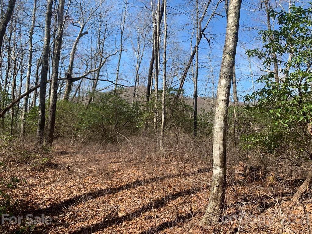 TBD Hummingbird Hollow #7, Rosman, NC 28772 (#3493808) :: Puffer Properties