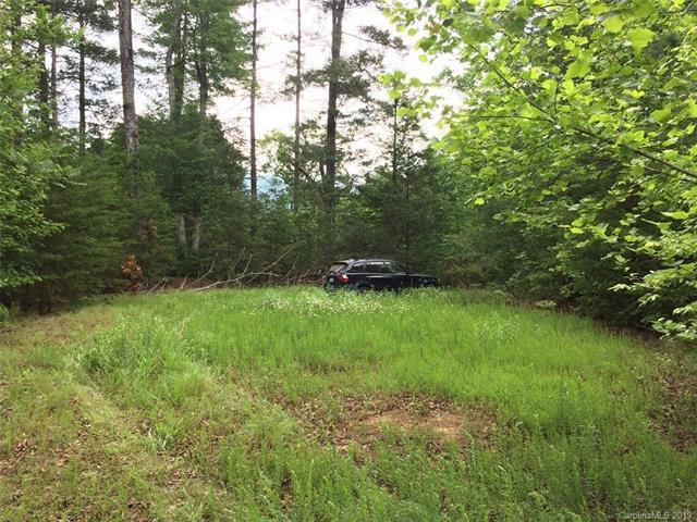 6 Woodfen Lane #6, Lake Lure, NC 28746 (#3493839) :: Keller Williams Professionals
