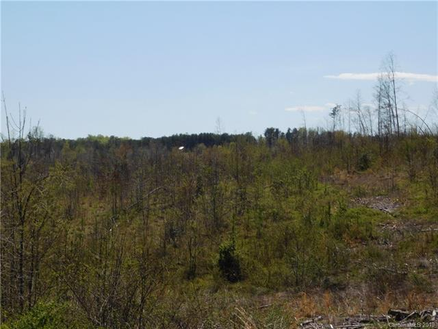 0 Piney Knob Road, Rutherfordton, NC 28139 (#3493954) :: DK Professionals Realty Lake Lure Inc.