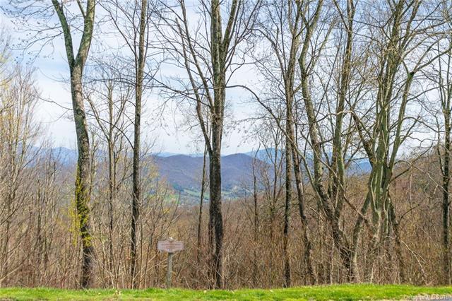 Lot 53 Mountain Air Drive, Burnsville, NC 28714 (#3494015) :: Team Honeycutt
