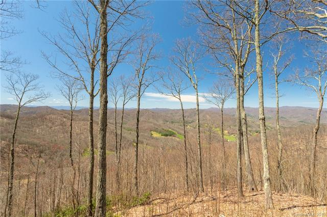 Lot 13 Starry Woods Lane, Burnsville, NC 28714 (#3494019) :: IDEAL Realty