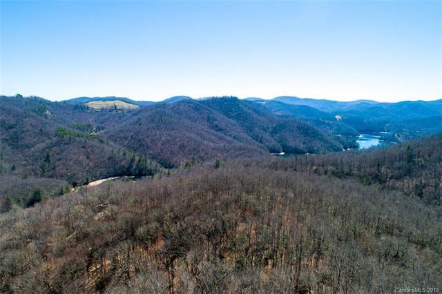 Lot #8 Forest View Lane #8, Tuckasegee, NC 28783 (#3494027) :: LePage Johnson Realty Group, LLC