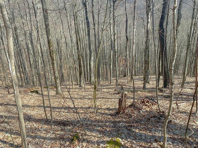 00 Chimney Ridge Trail 114-B, Waynesville, NC 28786 (#3494400) :: Rinehart Realty