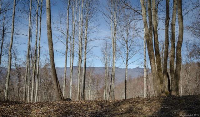 65 Old Growth Way #61, Sylva, NC 28779 (#3494746) :: Rinehart Realty