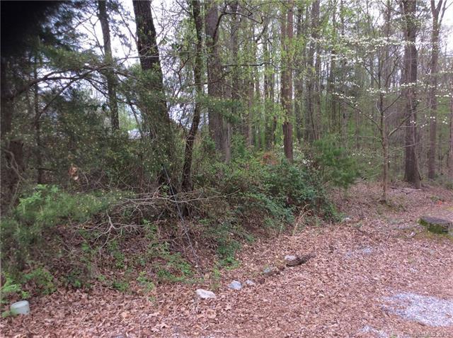 4950 Vagabond Lane, Sherrills Ford, NC 28673 (#3494973) :: Mossy Oak Properties Land and Luxury