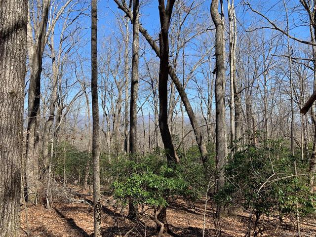 TBD Skye Drive #31, Pisgah Forest, NC 28768 (#3494989) :: Caulder Realty and Land Co.