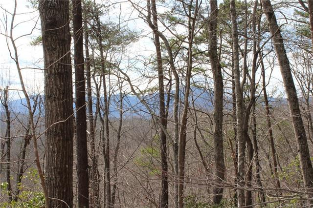 Lot 113 Rabbits Place #113, Lake Lure, NC 28746 (#3495057) :: Exit Mountain Realty