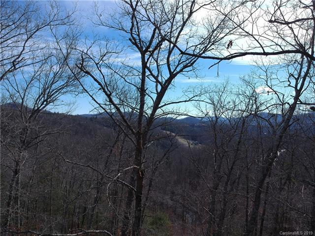 155 Turkey Trot Trail 17 Trailside, Marshall, NC 28753 (#3495312) :: Team Honeycutt