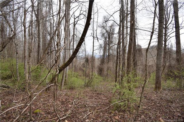 #28 Pineneedle Way #28, Canton, NC 28716 (#3495483) :: Carlyle Properties