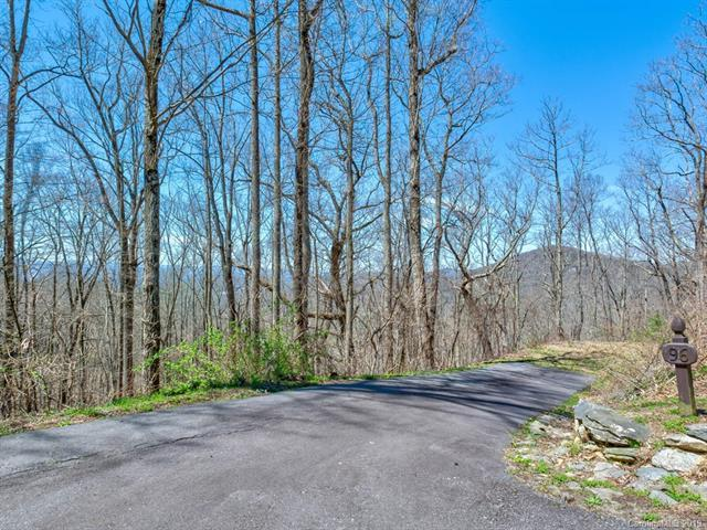 96 Castanea Mountain Drive, Asheville, NC 28803 (#3495918) :: Caulder Realty and Land Co.