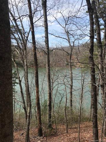 0 Hawk Ridge #6, Mill Spring, NC 28756 (#3496303) :: DK Professionals Realty Lake Lure Inc.