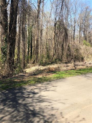 106 Pinto Lane, Morganton, NC 28655 (#3496666) :: Rinehart Realty