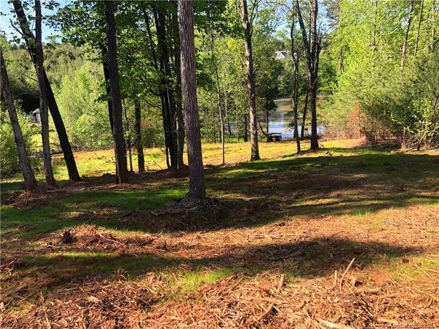 19632 Harbor Watch Court #287, Lancaster, SC 29720 (#3496763) :: Bluaxis Realty
