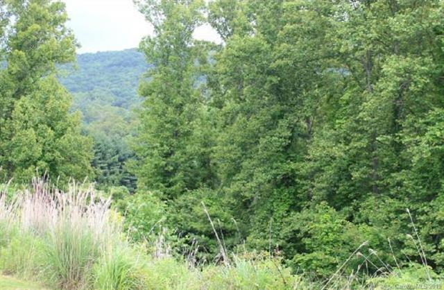 9999 Camsyn Drive Lot 23, Weaverville, NC 28787 (#3497055) :: Roby Realty