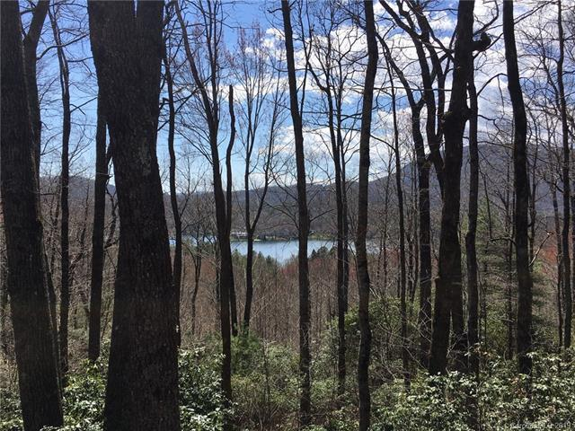 0 Hawk Mountain Road #30, Lake Toxaway, NC 28747 (#3497120) :: Exit Mountain Realty